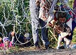Migranti cercano di attraversare il confine tra Serbia e Ungheria