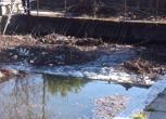 Milano, torna l'acqua nel canale Martesana. Ma è subito emergenza detriti