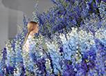 Le foto più belle della moda a  Parigi