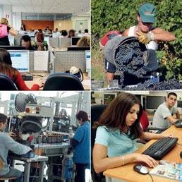 Ecco le professioni del futuro, dal transmedia web editor al designer virtuale. Ma tra i mestieri tradizionali  domina la sanità