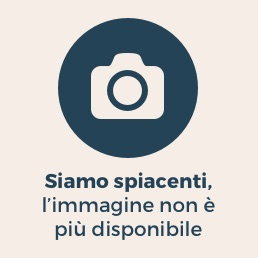 Nella foto il leader del Movimento 5 Stelle, Beppe Grillo