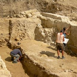 In centinaia al primo open day per gli archeologi, professione di disillusi ma appassionati (Ansa)