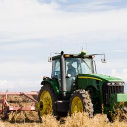 Ritorno alla terra in tempo di crisi: in aumento sia i lavoratori agricoli che gli orti urbani