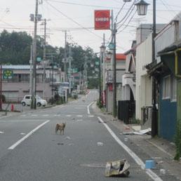 La città di Okuma, a pochi chilometri da Fukushima