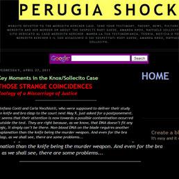 Google rimuove blog dedicato al delitto di Perugia