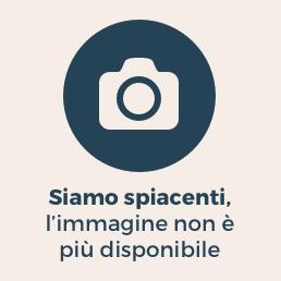 Roma, imprenditore triestino ancora sul Cupolone: �Non sono un pazzo suicida, sono solo un disperato� (Lapresse)