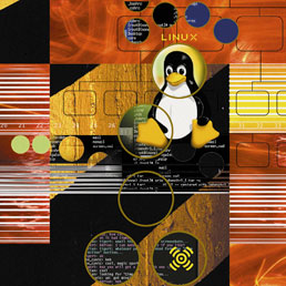 Ibm investe un miliardo di dollari su Linux: il sistema operativo è decollato anche su mobile con Android