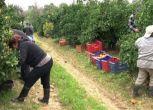 8 Marzo, una impresa agricola su 3 è guidata da una donna