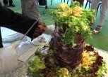 Napoli, arriva il Kepurp: risposta campana al dilagare dei Kebab