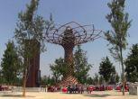 Expo 2015 e città d'arte le mete italiane degli utenti Facebook